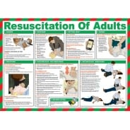 Resuscitation Of Adults Posters 590mm x 420mm