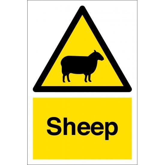 Sheep Warning Signs